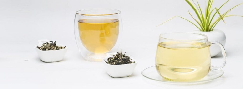 Propiedades y características del té blanco